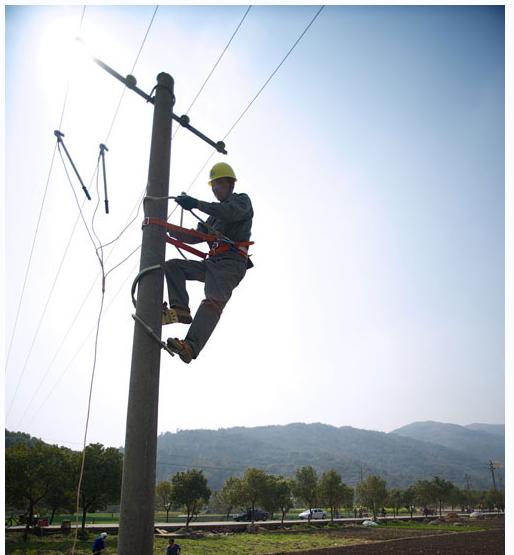 温州电力立8基水泥电线杆农排线路助春耕